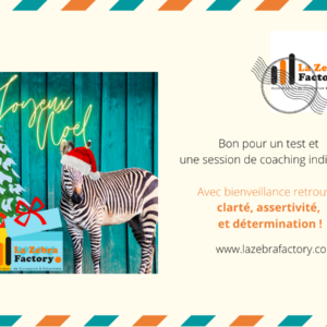 Cadeau Noel Test + Session de coaching